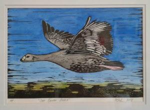 cape barren goose linocut