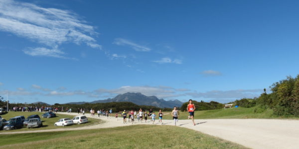 Mt Strzelecki backdrop for Flinders Island Running Festival