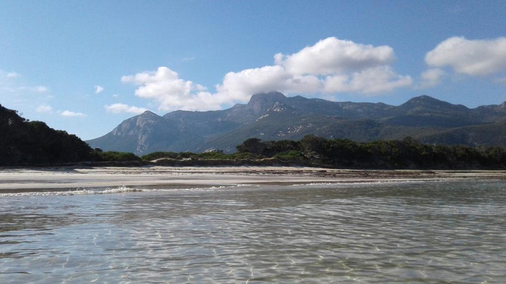 mt strzelecki flinders island